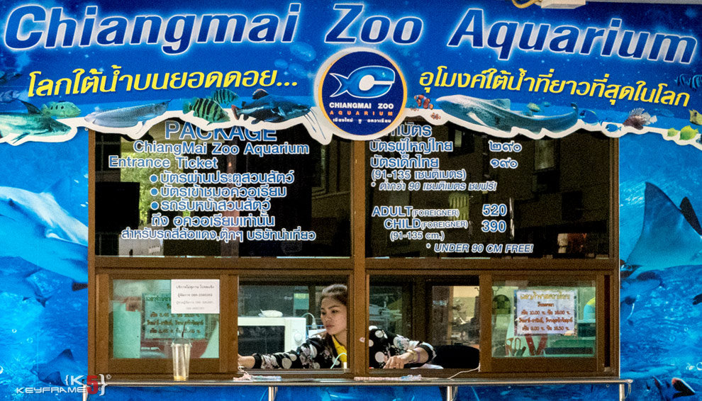 Entrance fee for Chiang Mai Zoo