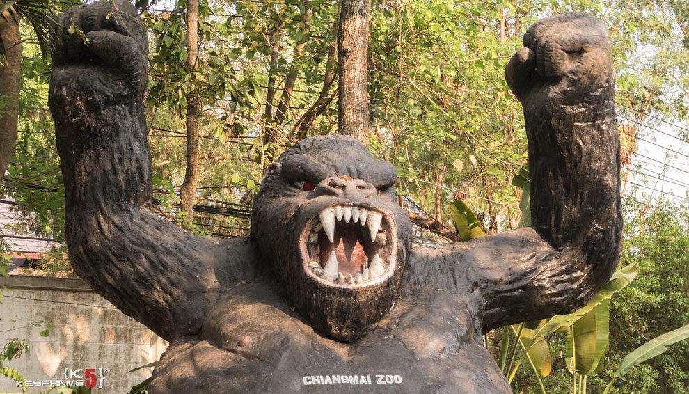 Gorilla yin Chiang Mai Zoo
