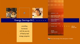 BC Energy Savings Group's website in 2002 to 2007 - no gas and electricity prices